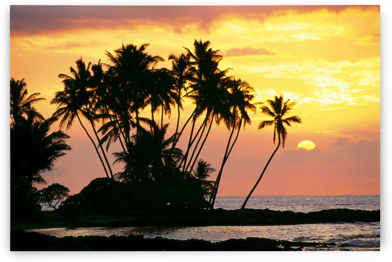 Hawaii, Big Island, Wailua Bay, View Of Palm Trees At Sunset, Calm Ocean Waters by PacificStock