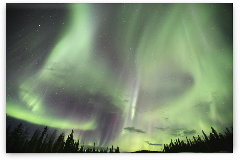 Northern Lights Over Teslin, Yukon. by PacificStock