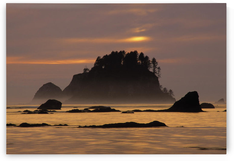 Sunset At Olympic National Park, Cape Alava, Washington State. by PacificStock
