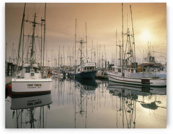 Victoria Harbour, Victoria, Bc, Canada by PacificStock