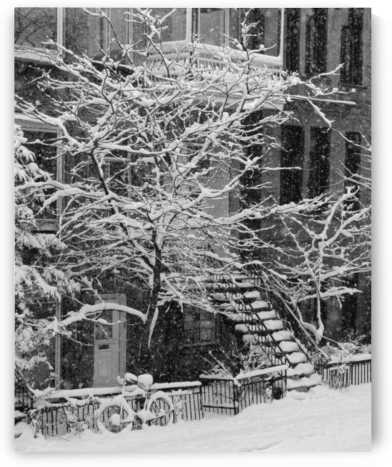 Drolet Street In Winter, Montreal, Quebec, B/W by PacificStock
