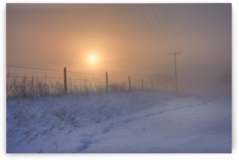 Foggy Winter Sunrise Over Barbed Wire Fence And Hydro Lines, Alberta Prairie by PacificStock
