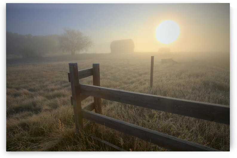 Foggy Autumn Sunrise Over Abandoned Farm With Fence And Barn, Alberta Prairie by PacificStock