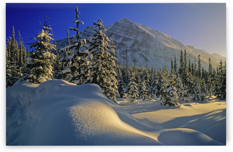 Winter Scene, Boom Lake, Banff National Park, Alberta by PacificStock
