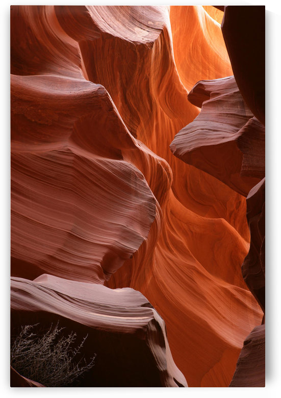 Antelope Canyon, Page, Arizona by PacificStock