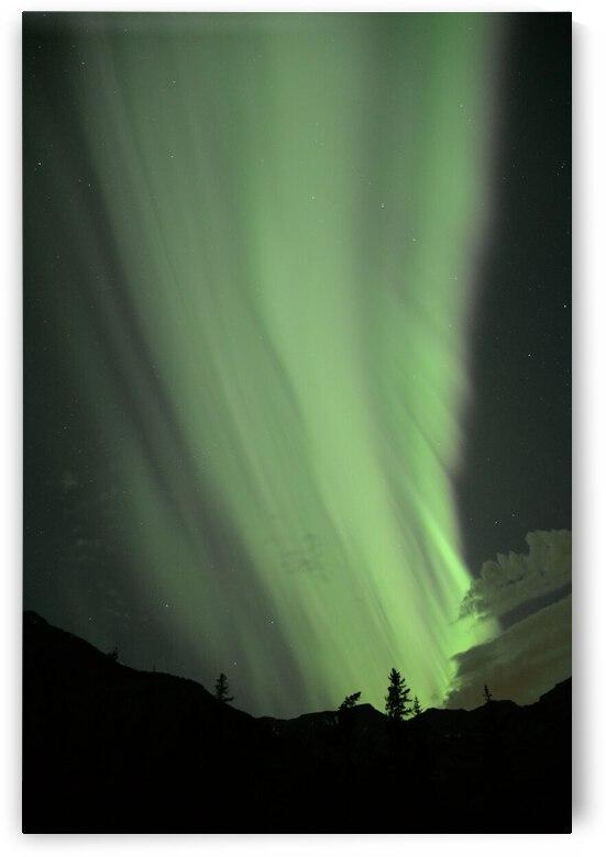 Rocky Mountain Aurora by Jody Majko