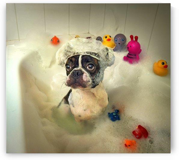 The Bath by 1x