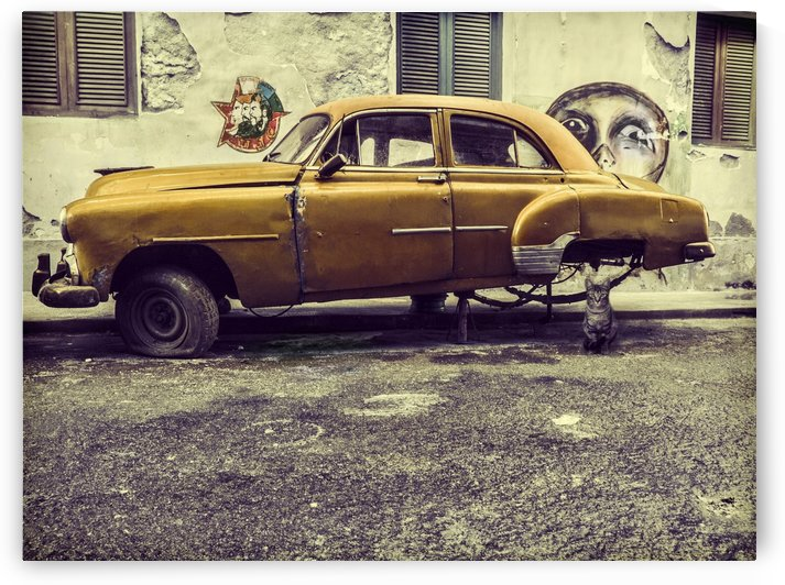 Old car/cat by 1x