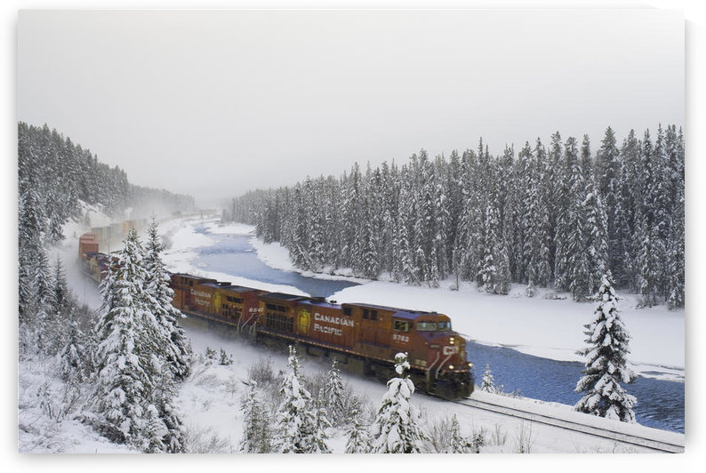 Canadian Pacific Train At Morant's Curve Along The Bow River, Banff National Park, Alberta by PacificStock