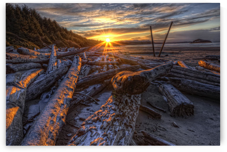 Sunrise Over The Logs At Long Beach, Pacific Rim National Park, British Columbia. by PacificStock