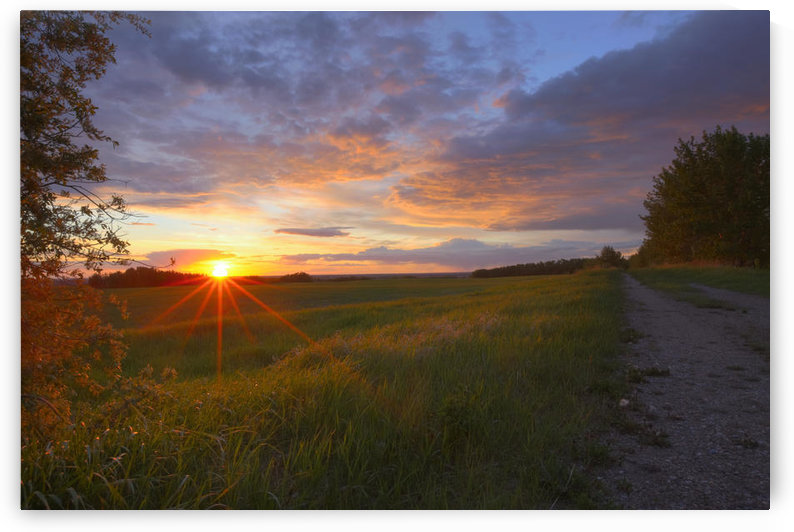 Sunset On The Rolling Hills Of The Prairies Of Alberta by PacificStock