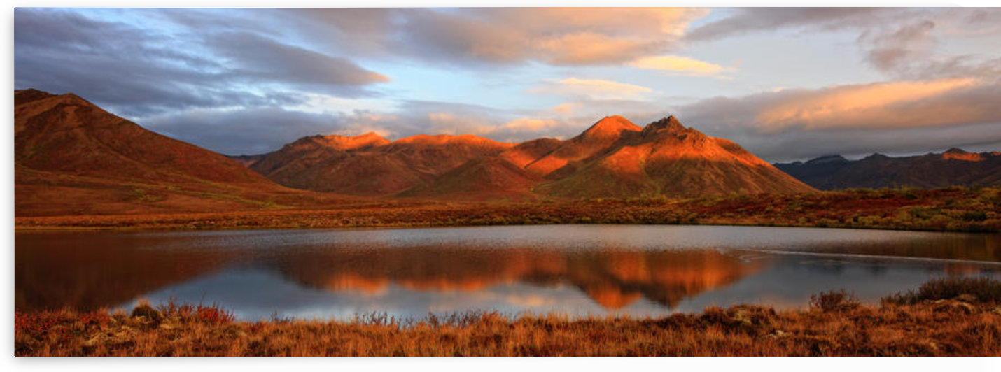 Panoramic Of Sunrise Over Mount Adney Reflected In A Pond In Fall, Along The Dempster Highway, Yukon by PacificStock