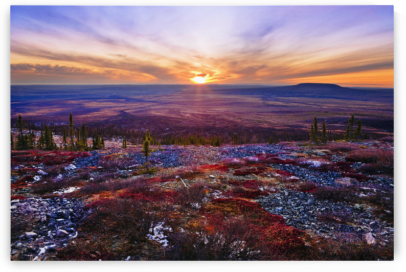 Fall Colours And Sunset Along Dempster Highway, Yukon by PacificStock