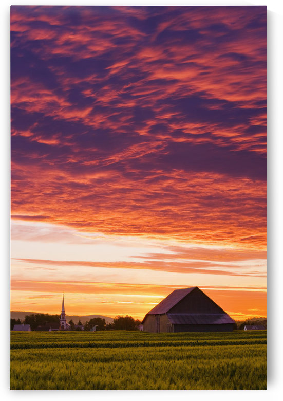 Barley Fields, Barn, Church And Colourful Sky At Dusk, Bas-Saint-Laurent Region, Saint-Donat, Quebec by PacificStock