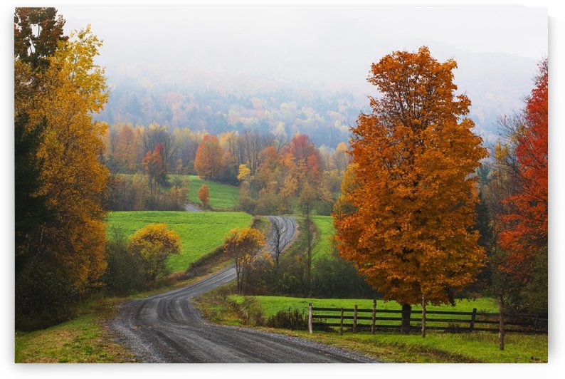 Dirt road in autumn with early morning fog; Iron Hill, Quebec, Canada by PacificStock