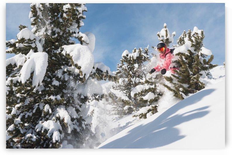 Snowboarding in powder snow; St. Moritz, Graubunden, Switzerland by PacificStock