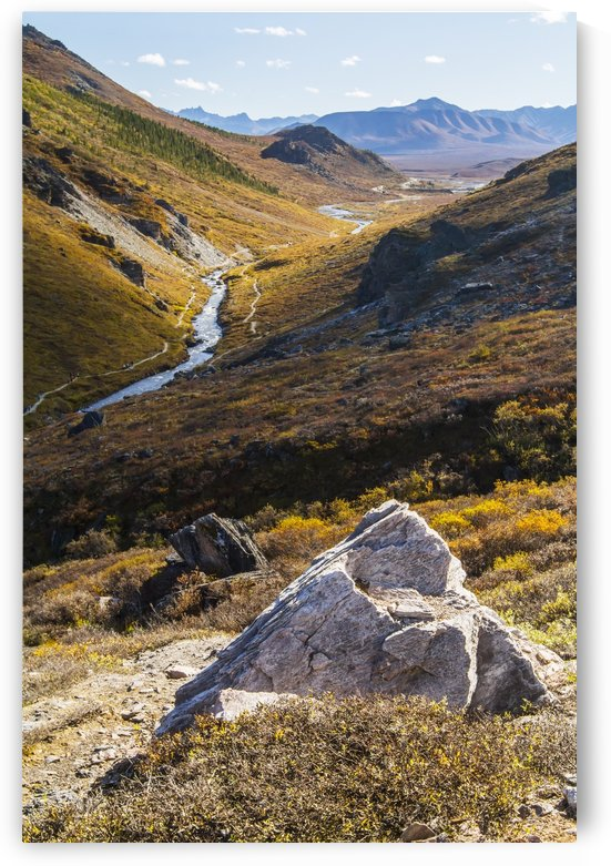 Savage River and the landscape in the rocky high country, Denali National Park and Preserve, interior Alaska; Alaska, United States of America by PacificStock