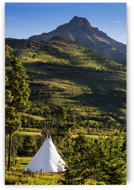 Large white canvas teepee in a treed field with green hillside and mountain peak in the background; Waterton, Alberta, Canada by PacificStock