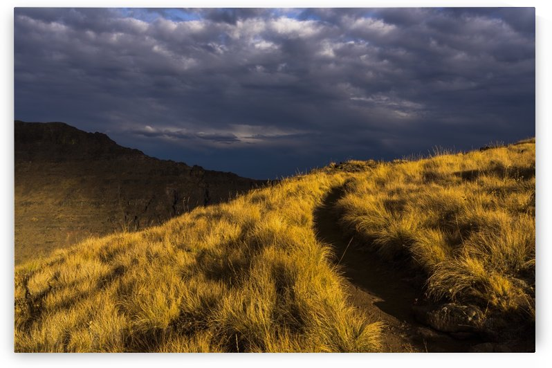 Evening sun highlights Kiger Gorge at Steens Mountain; Frenchglen, Oregon, United States of America by PacificStock