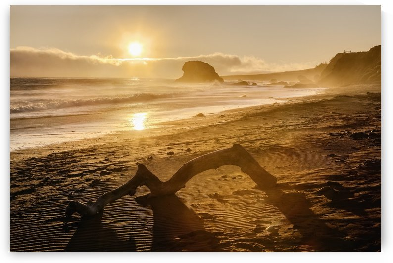 Seashore at sunset, San Simeon State Park; California, United States of America by PacificStock
