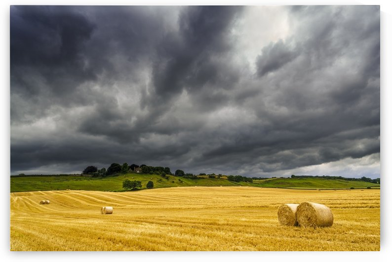 Dark storm clouds roll over a golden farm field with hay bales; Ravensworth, North Yorkshire, England by PacificStock