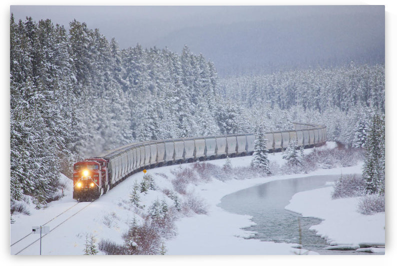 A Canadian Pacific Train Travels Along The Alberta Highway 1A; Lake Louise Alberta Canada by PacificStock