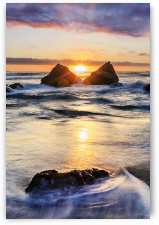 False Klamath Cove Beach, Redwood National and State Parks; California, United States of America by PacificStock