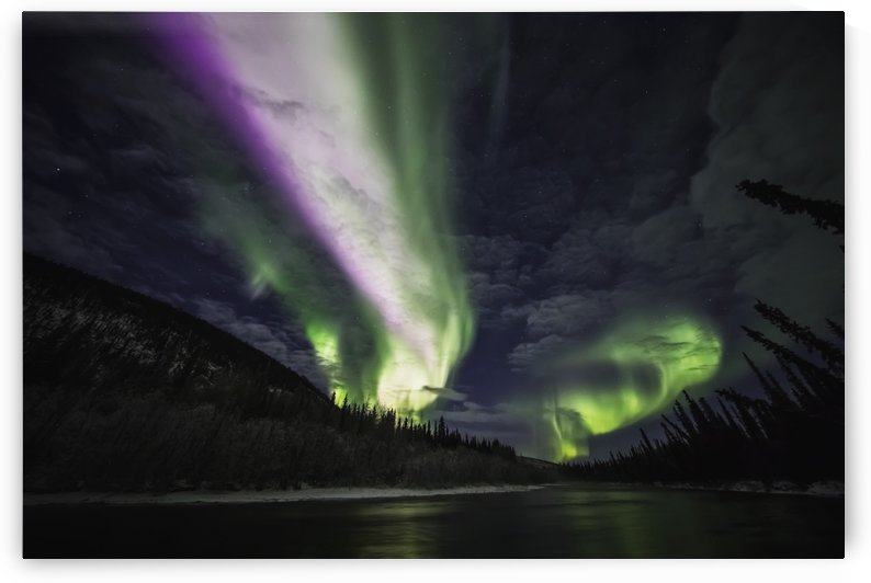 Colourful northern lights glowing in the night sky above a lake and forest; Yukon, Canada by PacificStock