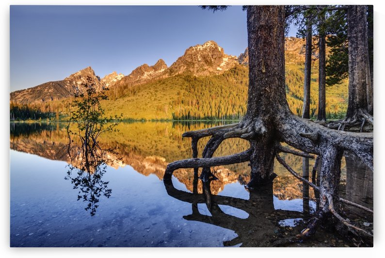 Teton Range and String Lake at sunrise, Grand Teton National Park; Wyoming, United States of America by PacificStock
