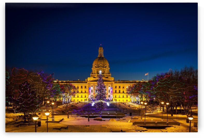 Alberta Legislature building illuminated and a Christmas tree with colourful lights on the trees for decoration at Christmas time; Edmonton, Alberta, Canada by PacificStock