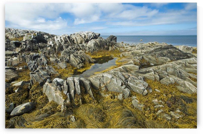 Shoreline along the Bay of Fundy, near Pubnico; Nova Scotia, Canada by PacificStock