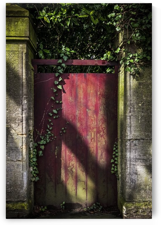 A red gate covered in ivy and moss; Bath, England by PacificStock