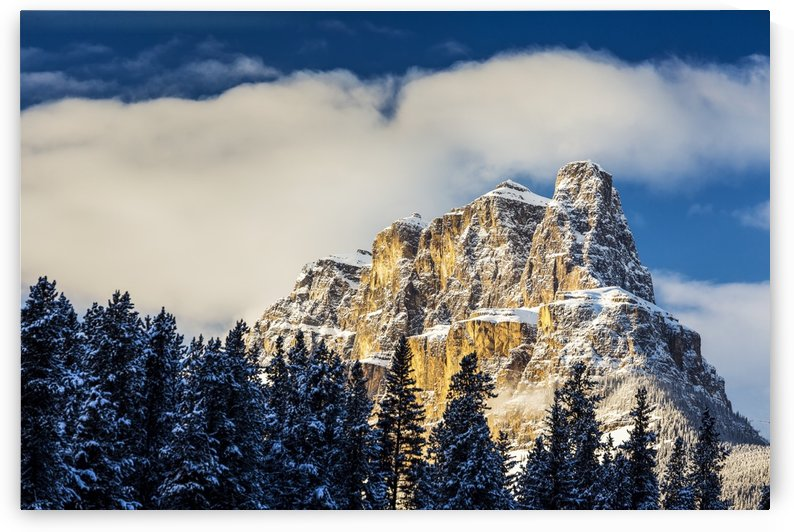 Snow covered rugged mountain and evergreen trees with blue sky and clouds; Banff, Alberta, Canada by PacificStock