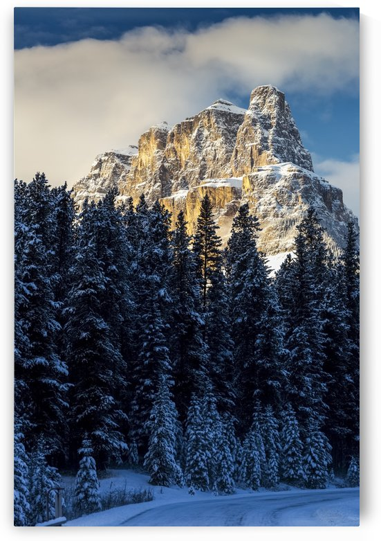 Snow covered rugged mountain and evergreen trees, snow covered road, with blue sky and clouds; Banff, Alberta, Canada by PacificStock