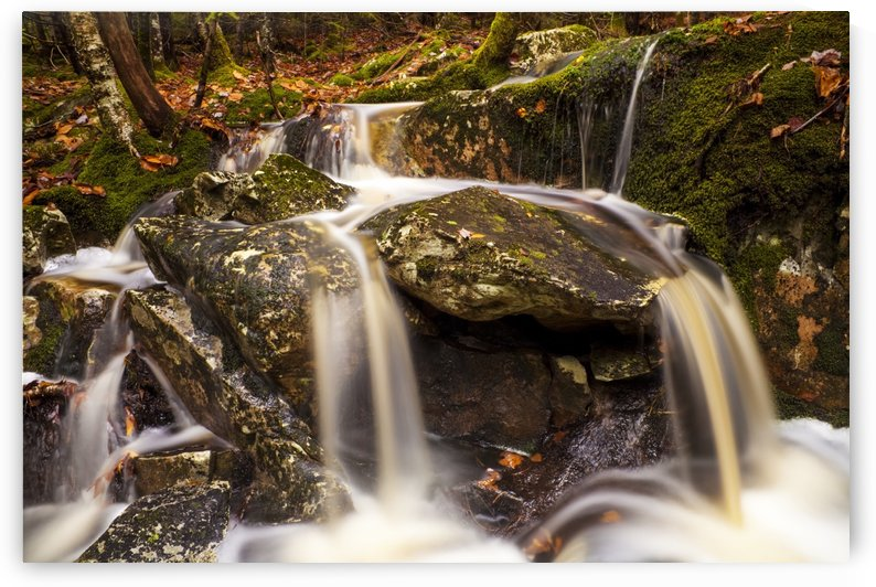 Small waterfall in the woods in autumn; Bedford, Nova Scotia, Canada by PacificStock