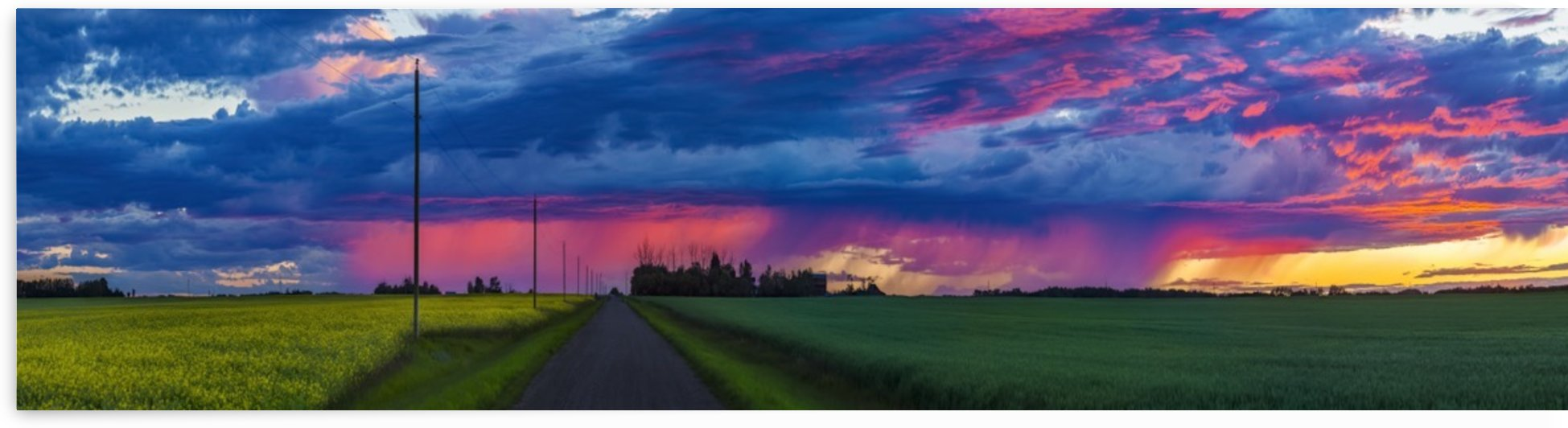 Dramatic colourful sky at sunset over green farmland and a country road; Alberta, Canada by PacificStock
