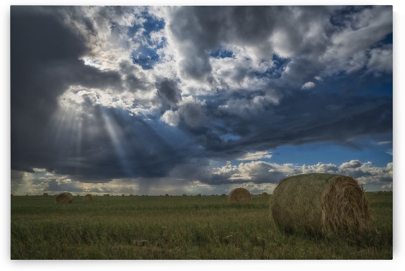 Sunlight breaks through the storm clouds over a field of hay bales; Saskatchewan, Canada by PacificStock