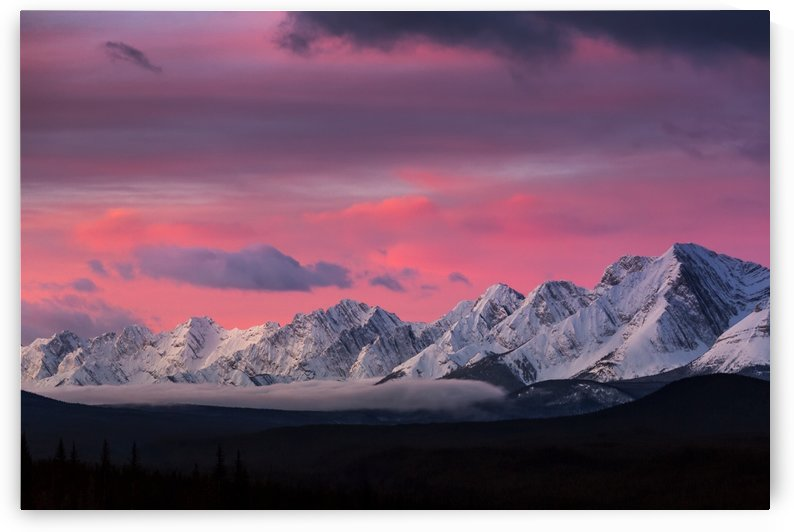 Dramatically glowing sky at sunrise with snow covered mountain range and fog in the valley; Kananaskis Country, Alberta, Canada by PacificStock