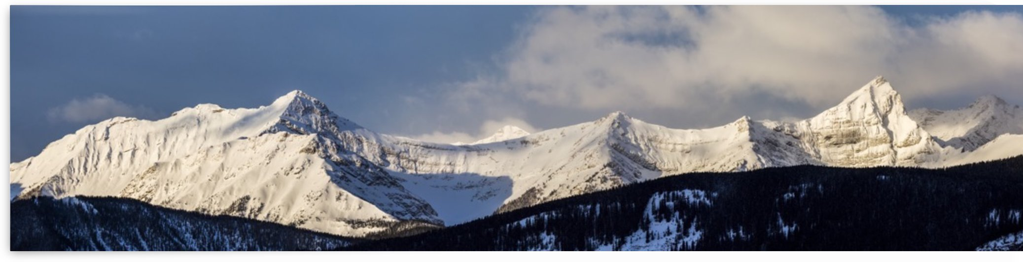 Panorama of snow covered mountains with early morning light, silhouetted forest in the foreground, blue sky and clouds; Kananaskis Country, Alberta, Canada by PacificStock