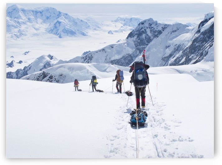 Mountaineer Group Descends Into The Maccarthy Gap On The King Trench Route, Mt. Logan, Kluane National Park, Yukon Territory, Canada, Summer by PacificStock