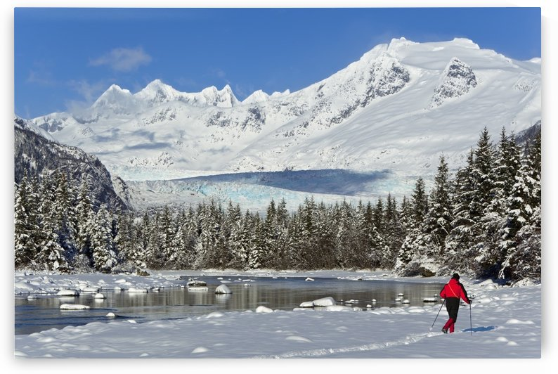 Person Cross-Country Skiing In A Winter Landscape At Mendenhall River With Mendenhall Glacier And Towers In The Background, Tongass National Forest, Southeast Alaska by PacificStock