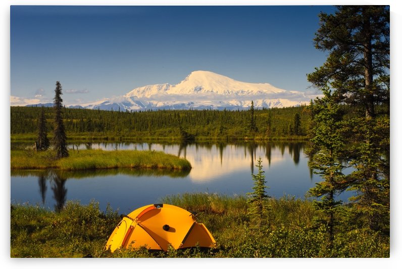 Tent Camping In Wrangell Saint Elias National Park With Mount Sanford In The Background, Southcentral Alaska, Summer by PacificStock