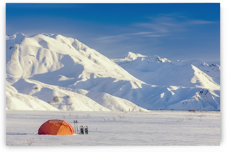 A Backpacking Tent With Snowshoes Next To It With The Alaska Range In The Distance In Winter Isabel Pass Richardson Highway Interior Alaska; Anchorage Alaska United States Of America by PacificStock