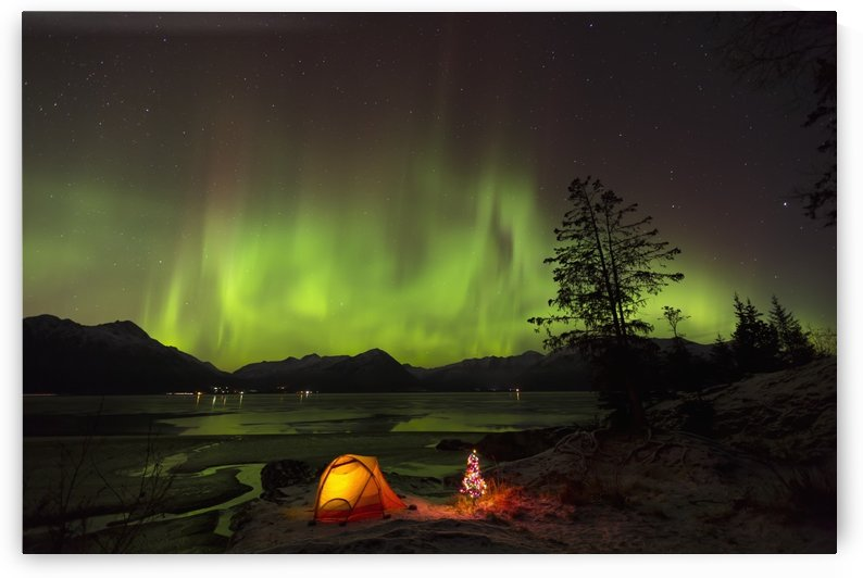 View of the Aurora Borealis (Northern Lights) dancing above the Chugach Mountains with a backpacking tent and Christmas Tree along the shore of Turnagain Arm, Kenai Peninsula, Southcentral, Alaska, Winter by PacificStock