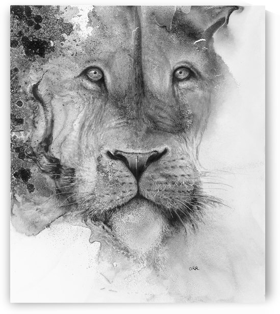 Illustration of a lion's face and a mottled background by PacificStock