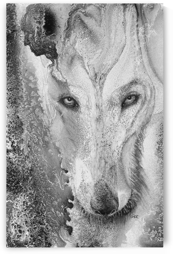 Illustration of a wolf and a mottled background by PacificStock