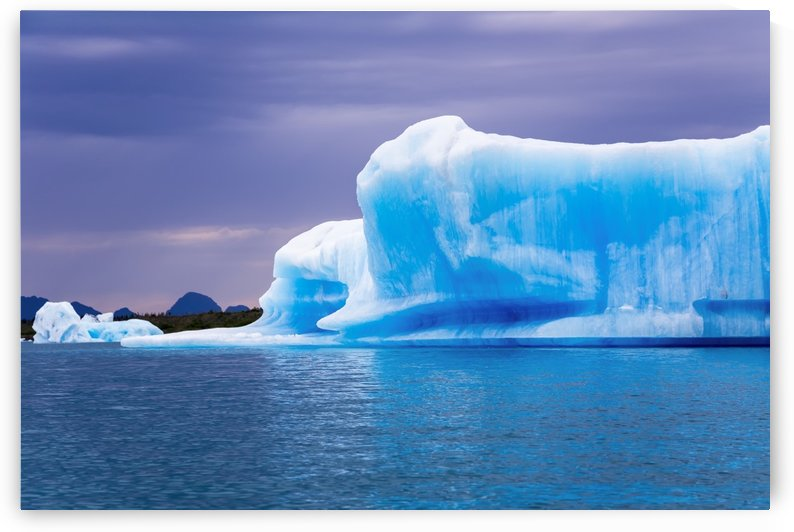 A vibrant blue iceberg floats in Bear Glacier Lagoon in Kenai Fjords National Park on an overcast day; Alaska, United States of America by PacificStock