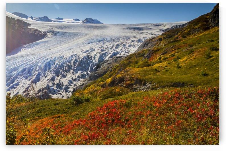 Exit Glacier near Seward, Alaska in South-central Alaska in autumn; Alaska, United States of America by PacificStock