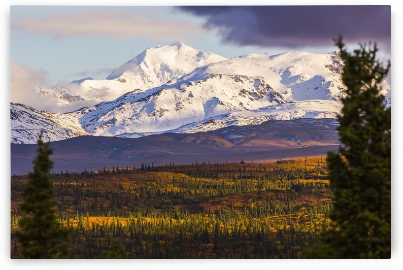 Mt. Silvertip shines in the evening sun in autumn, viewed from the Richardson Highway south of Delta Junction; Alaska, United States of America by PacificStock