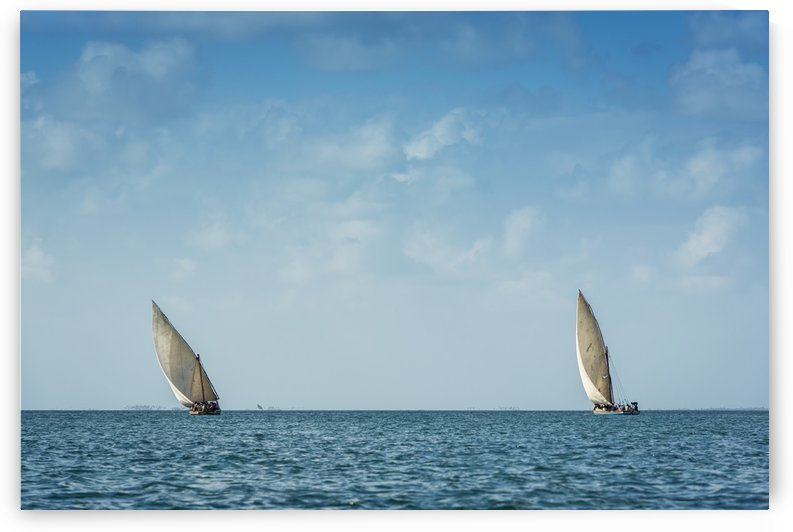Dhows fishing around Pemba; Cabo Delgado, Mozambique by PacificStock